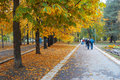 Autumn park avenue Royalty Free Stock Photo