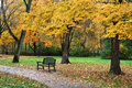 Autumn park bench a walking path and amid the brilliant colors of a rainy day sharon woods southwestern ohio usa Stock Photo
