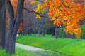 Autumn park bright paints of in the city Royalty Free Stock Photo
