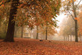 Autumn park foggy morning in a with a music chapel in Royalty Free Stock Photo