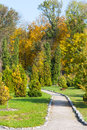 Autumn park green lanscaping nature design Royalty Free Stock Photo
