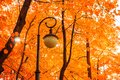 Autumn park landscape. Autumn trees and metal lantern on the background of yellowed autumn leaves Royalty Free Stock Photo