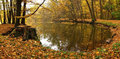 Autumn park and pond Royalty Free Stock Photo