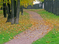 Autumn in the park september fallen leaves on road Royalty Free Stock Photos