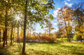 Autumn in park by st petersburg regio Stock Photography