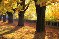 Autumn at park town ruzomberok slovakia Royalty Free Stock Image