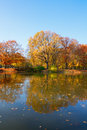 Autumn Park With Trees Over Wa...