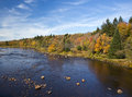 Autumn pastoral landscape shallow river with colorful scenery along the shore Stock Image