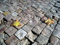 Autumn paved pathway Royalty Free Stock Photo