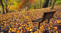 Autumn peace beautiful colours of in south australia Royalty Free Stock Image