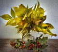 Yellow leaves and red berries.Autumn still life