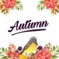 Autumn poinsettia birdsong border vivid color Royalty Free Stock Photo