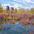 Autumn Pond Landscape Royalty Free Stock Photo