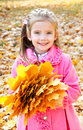 Autumn portrait of cute smiling little girl with maple leaves outdoor Royalty Free Stock Photography