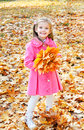 Autumn portrait of cute smiling little girl with maple leaves outdoor Royalty Free Stock Images