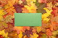 Autumn postcard blank green envelope surrounded by bright leaves Royalty Free Stock Photos