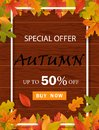 Autumn promo offer template background for website with frame, leaves and wood.Special offer, autumn sale, discount banner.vector