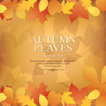 Autumn promotional banner with old paper Stock Photos