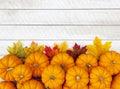 Autumn Pumpkin Thanksgiving Background Royalty Free Stock Photo