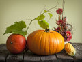 Autumn pumpkins and corn Stock Photos