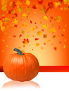 Autumn Pumpkins and leaves. Stock Images