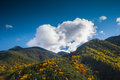 Autumn in pyrenees Royalty Free Stock Images