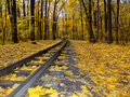 Autumn Railway Royalty Free Stock Photos