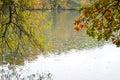 Autumn rainy day Royalty Free Stock Photo