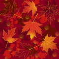 Autumn red seamless. Stock Photos