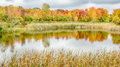 Autumn Reflection on North Dogwood Pond, Woodland Hills Nature Center, MI Royalty Free Stock Photo