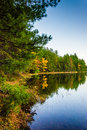 Autumn reflections in Long Pine Run Reservoir, in Michaux State Royalty Free Stock Photo