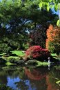 Autumn Reflections on a Pond vertical Royalty Free Stock Photo