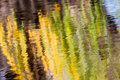 Autumn reflections of a willow tree in october Stock Photography