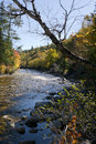 Autumn river in Nova Scotia Royalty Free Stock Images