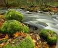 Autumn River in September Stock Image