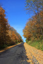 Autumn Road Royalty Free Stock Photography