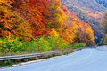Autumn Road Stock Photography