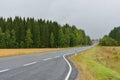 Autumn road in haze of rain finland Stock Photos