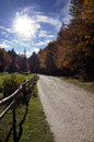 Autumn road a mountain in the warm sun Stock Photography