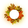 Autumn round frame with dry and gold glitter leaves Royalty Free Stock Photo