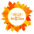 Autumn round frame with hand drawn golden leaves. Hello autumn text in the wreath. Fall greeting design.