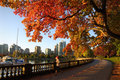 Autumn Run, Stanley Park Seawall, Vancouver Royalty Free Stock Photo