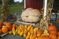 Autumn in rural maine farm stand of pumpkins and gourds Royalty Free Stock Photography