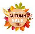 Autumn sale background. Autumnal seasonal shopping offer discount banner, promotion price flyer. Colorful fall leaves
