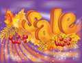 Autumn sale banner Royalty Free Stock Images