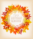 Autumn Sale Banner With Colorful Leaves.