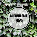 Autumn Sale -65%. Creative layout made with green leaves background, square frame. This is a blank for advertising card.