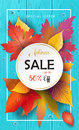 Autumn Sale Fall leafs, blue wooden texture Royalty Free Stock Photo