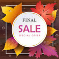 Autumn Sale Fall leafs, wood table top view Royalty Free Stock Photo