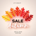 Autumn Sale Paper Cut leaves. September flyer template. Space for text. Origami Foliage. Oak. Fall poster background